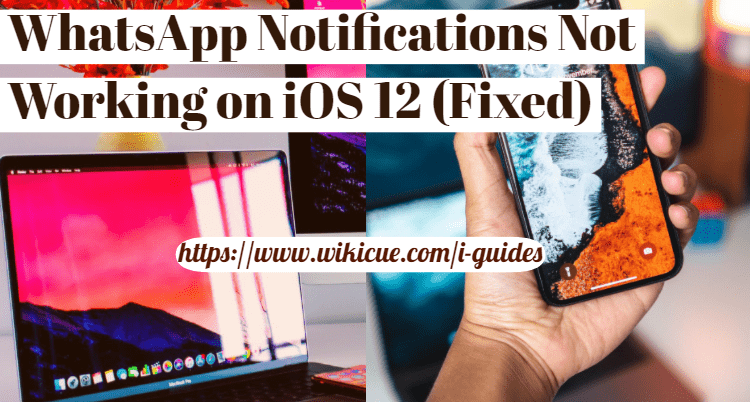 WhatsApp-Notifications-Not-Working-on-iOS-12